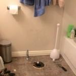 Toilet Troubles!